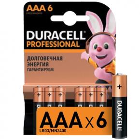 Батарея Duracell Professional AAA LR03/MN2400 6шт.